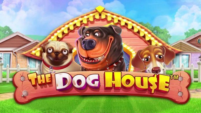 dog-house-casumo